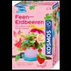 Ludibrium-Kosmos - Feen-Erdbeeren - Experimentier-Set